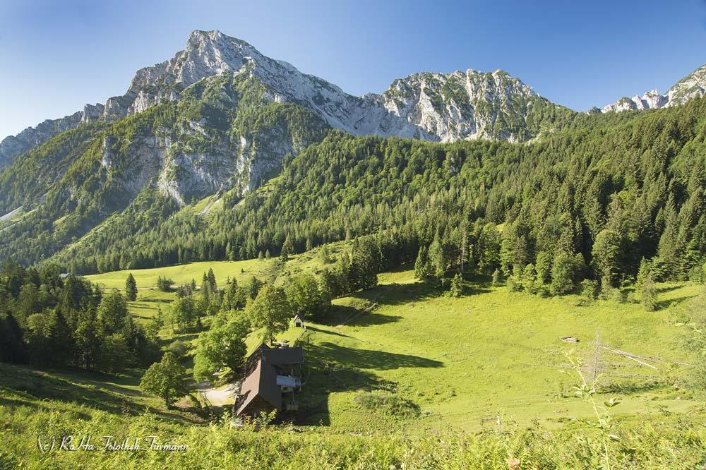 Blick über die Steiner Alm mit dem Hochstaufen im Hintergrund - Gemeinde Piding, Berchtesgadener Land, Rupertiwinkel, Oberbayern, Deutschland