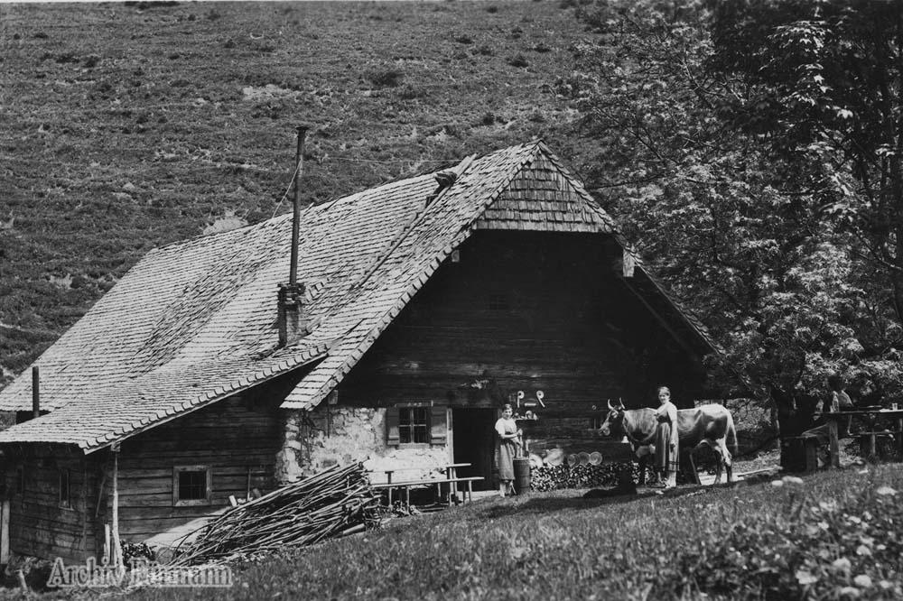 Piding, Steiner Alm mit Sennerin und Kuh