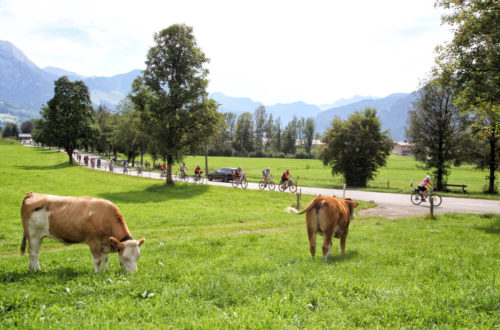 Die EuRegio-Genuss-Radtour in Bischofswiesen