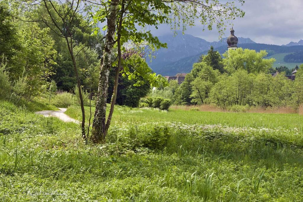 Mountainbiker in Höglwörth in der Gemeinde Anger im wunderbaren Frühling, Rupertiwinkel, Berchtesgadener Land, Bayern