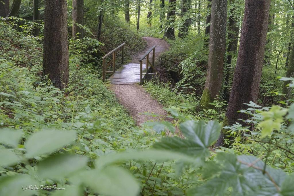 Wanderweg in Teisendorf - der sog. Verschönerungsweg - Berchtesgadener Land - Rupertiwinkel
