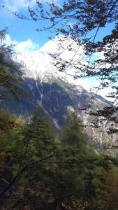 blick-zum-untersberg