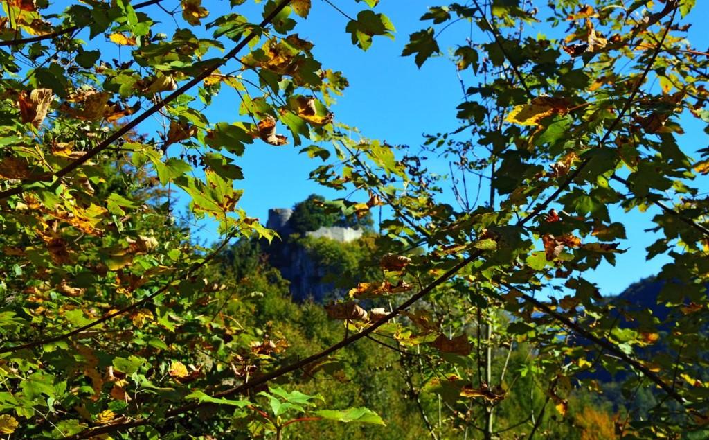 Blick durch den Herbstwald zur Burgruine Karlstein