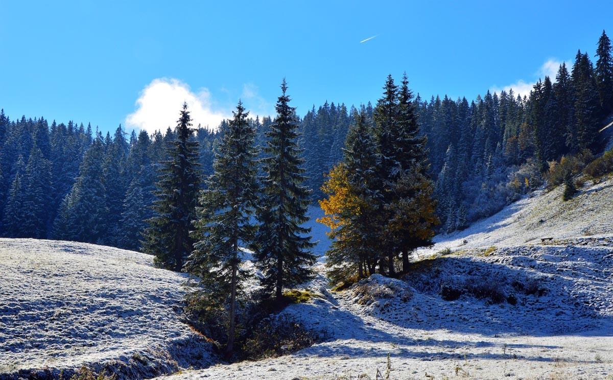 Schnee und Sonne auf der herbstlichen Kallbrunnalm