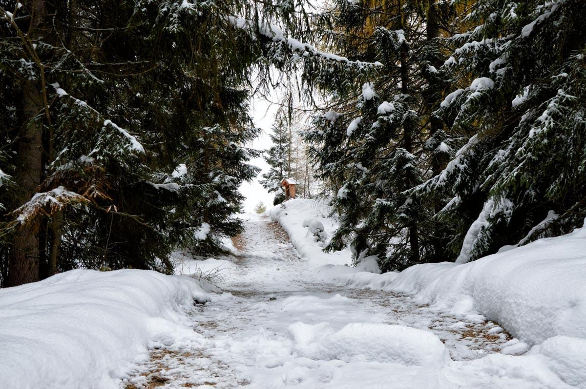 Winterwanderung zum Brandkopf