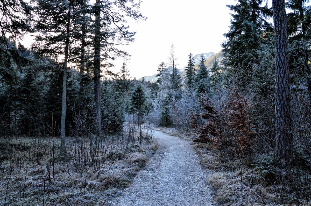 Wanderweg durchs Klausbachtal