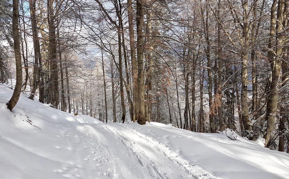 Skitouren-Aufstiegsspur zum Götschenkopf