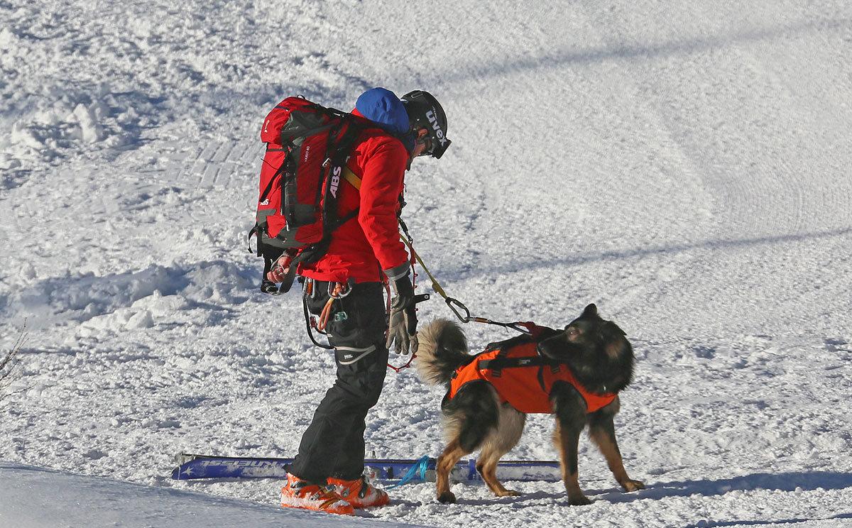 Lawinenhund Ausbildung auf der Reiter Alm © BRK BGL