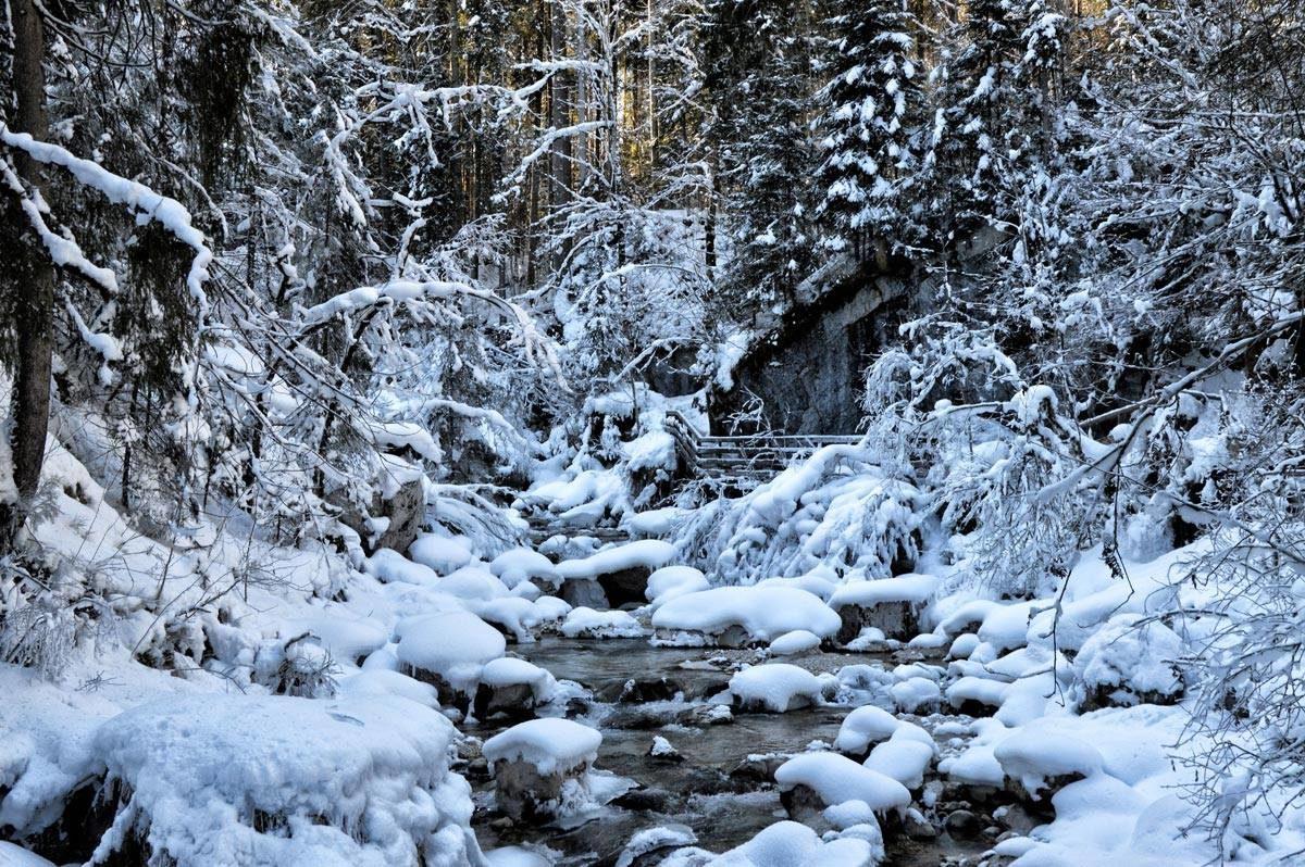 Winterwanderung im Zauberwald Ramsau
