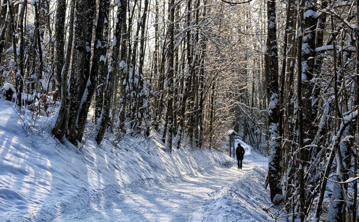 Winterwandern auf dem Königsseer Fußweg