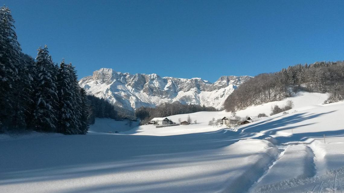 Winter in der Scheffau mit Blick zum Untersberg