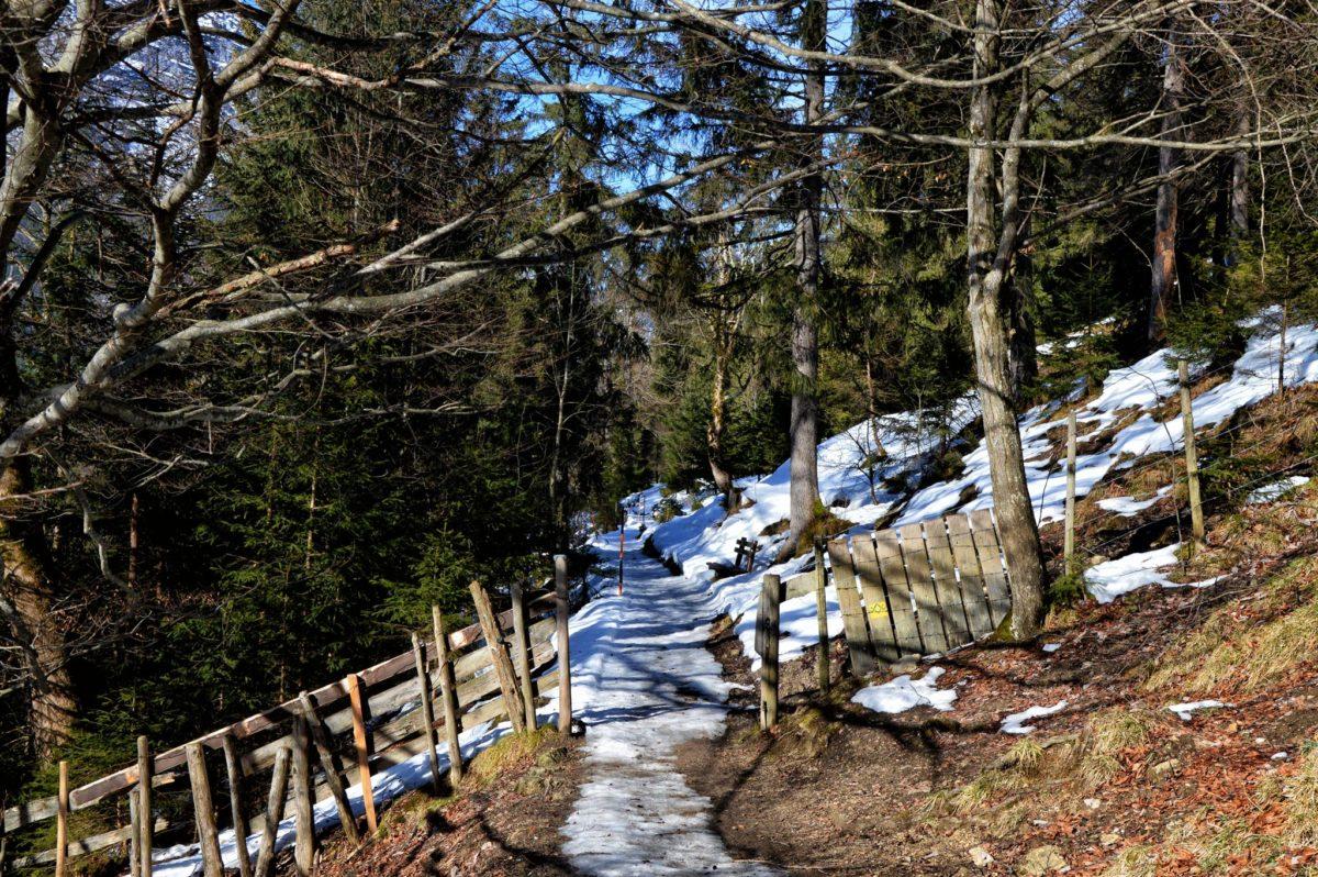 Der Soleleitungsweg: geräumter Winterwanderweg