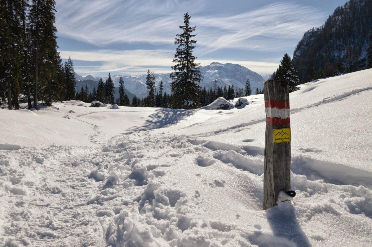 Die SalzAlpenTour Markierung weist den Weg zur Archenkanzel