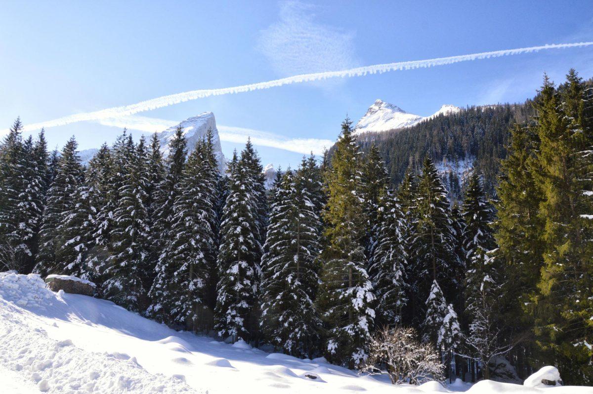 Blick zum Watzmann von der Schapbachalm