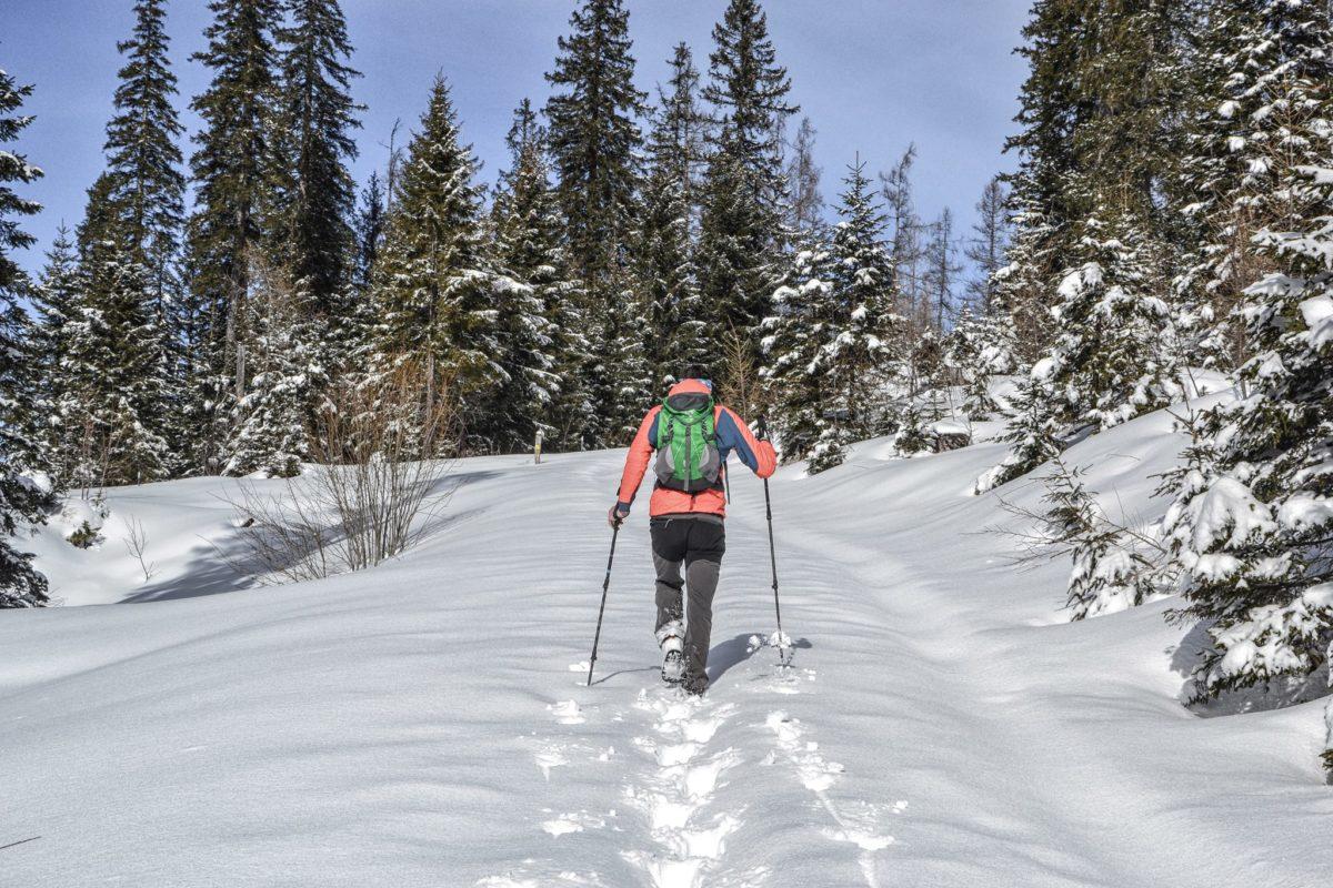 Winterwandern auf dem lichten Plateau im Lattengebirge
