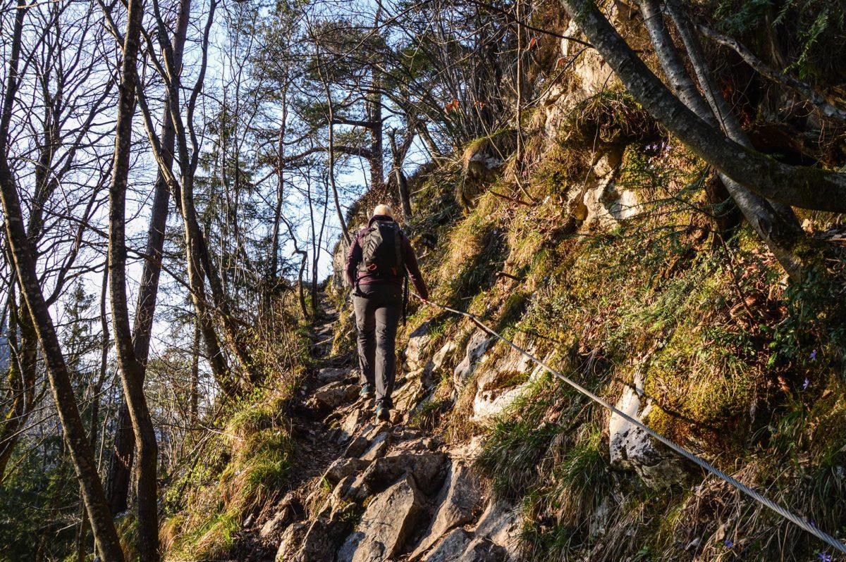 Aufstieg zum Großen Barmstein