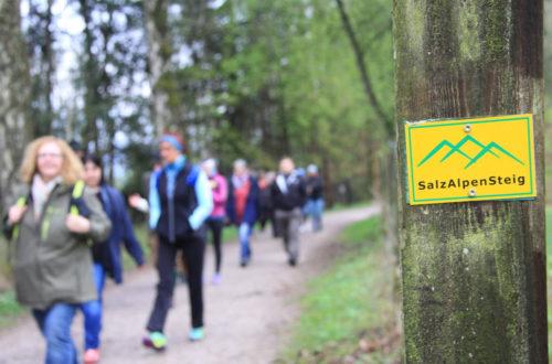Wandern auf dem Premiumweitwanderweg SalzAlpenSteig