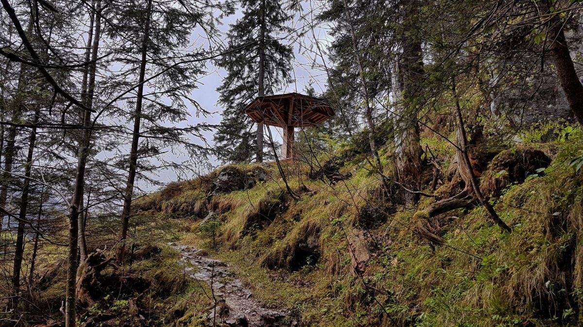 Regenwanderung auf dem Schattseitweg im Bergsteigerdorf Ramsau