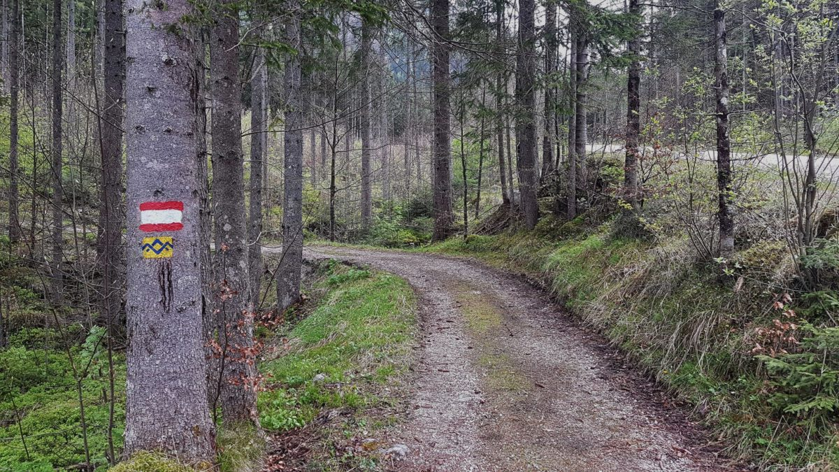 SalzAlpenTour Ramsauer Schattseitweg