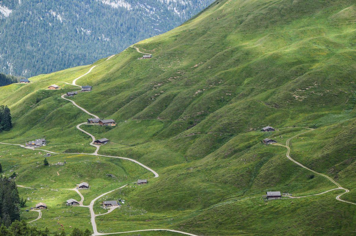 Die Kallbrunnalm: Größte Alm in den Berchtesgadener Alpen