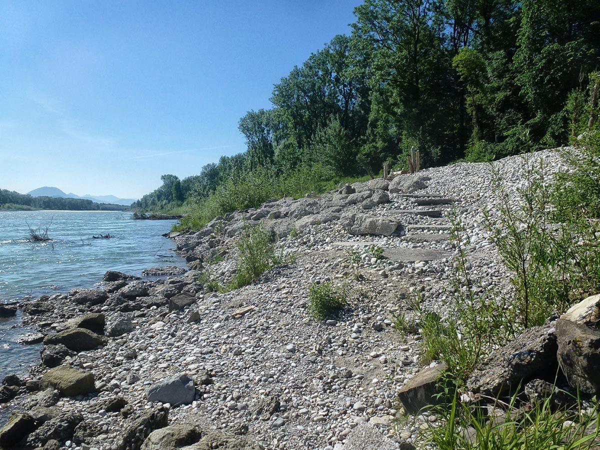 Das Salzachufer zwischen Laufen und Freilassing © Wasserwirtschaftsamt Traunstein