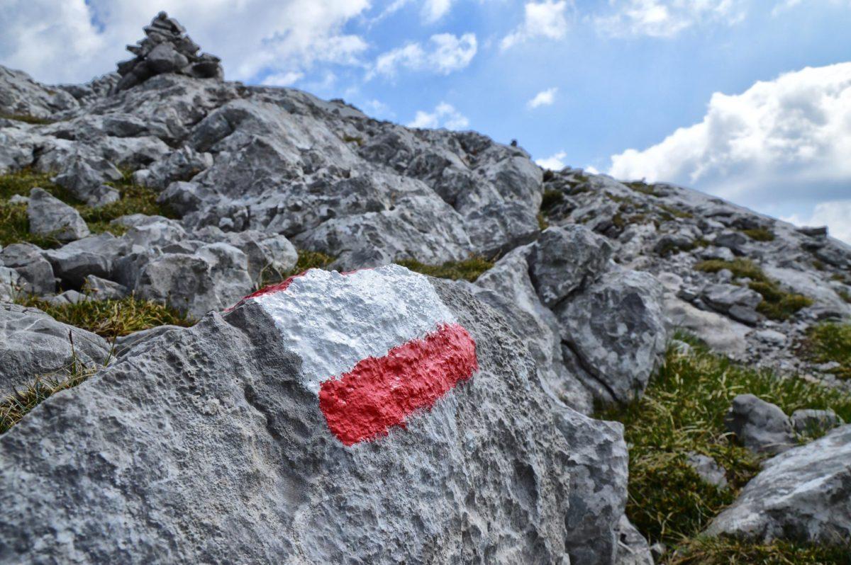 Kurz vor dem Gipfel des Kahlersbergs