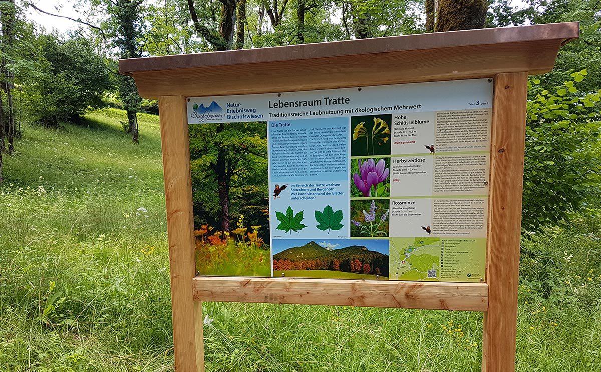 Lebensraum Tratte | Natur-Erlebnisweg Bischofswiesen