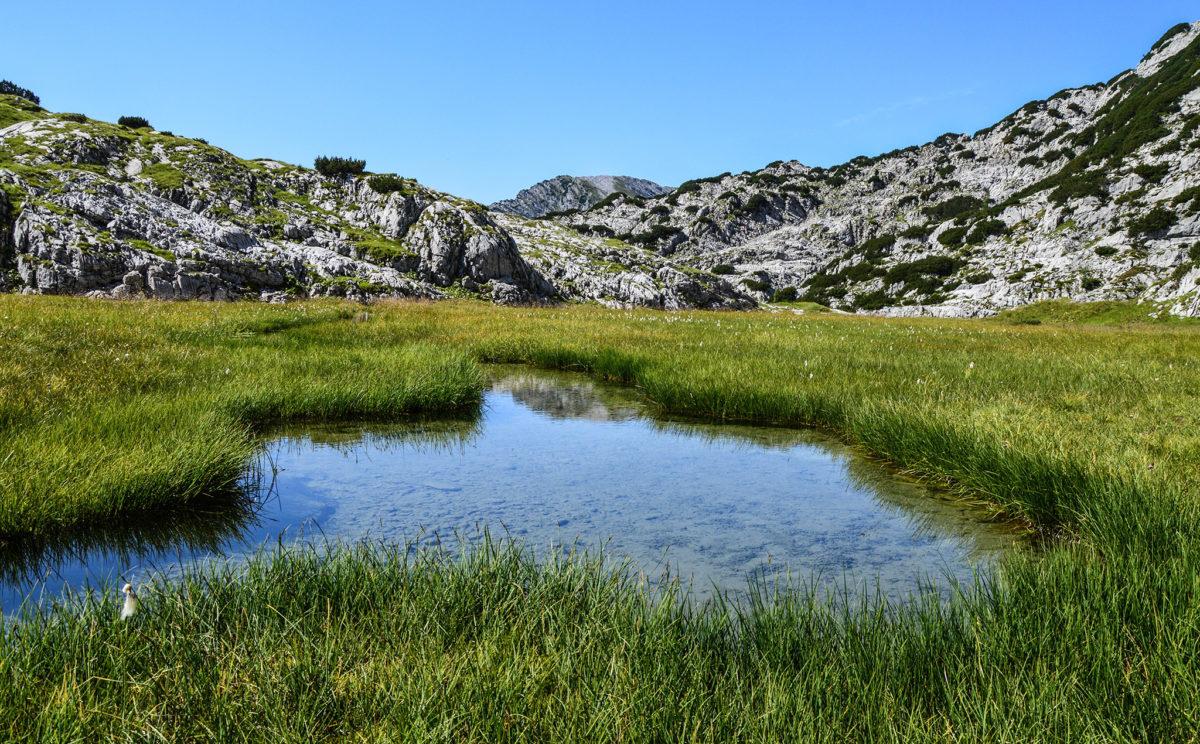 Ein kleiner See auf der Hochwies'