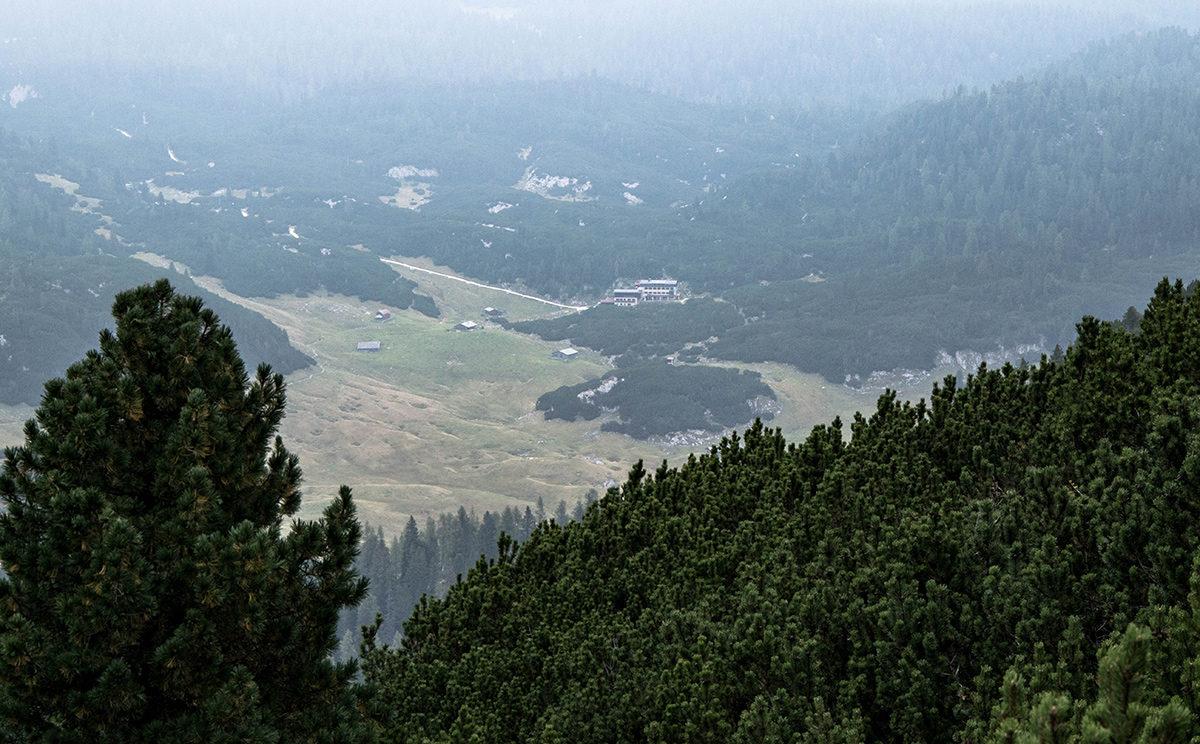 Blick über die Latschen zur Neuen Traunsteiner Hütte