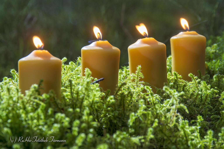 holzkranz mit grün zum advent