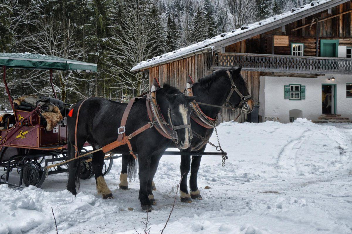 Endstation der Kutschfahrt am Klausbachhaus