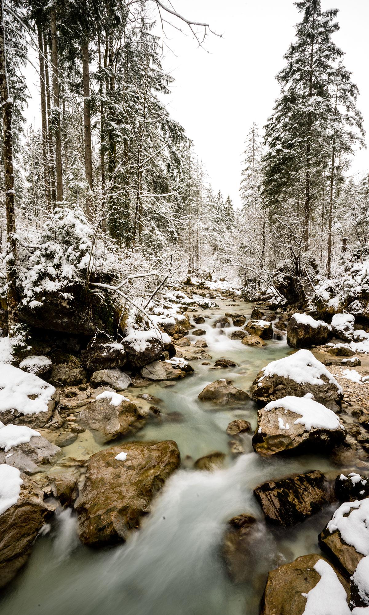 Der winterliche Zauberwald © Nina Schlesener
