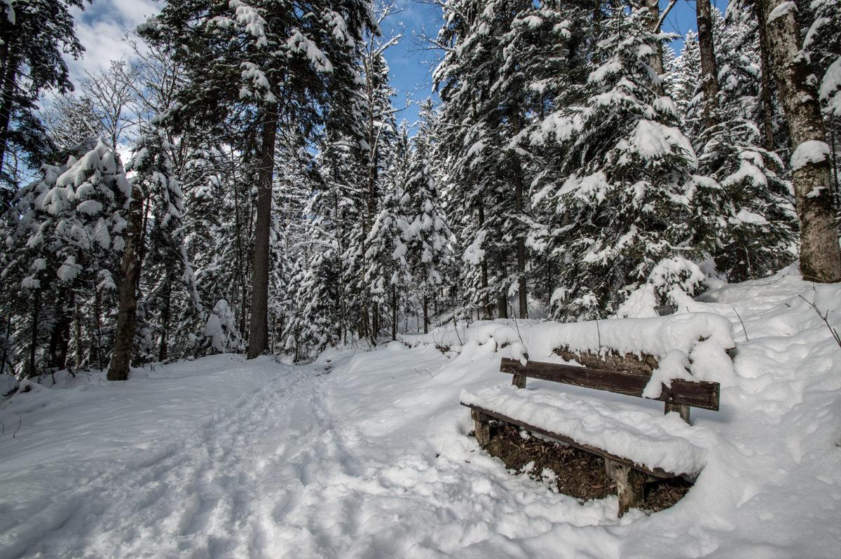 Winterwanderung von Maria Gern zur Marxenhöhe