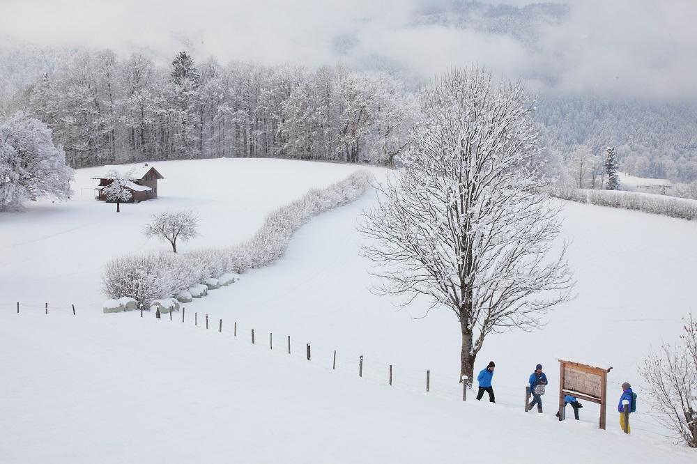 Winter am Natur-Erlebnisweg Bischofswiesen