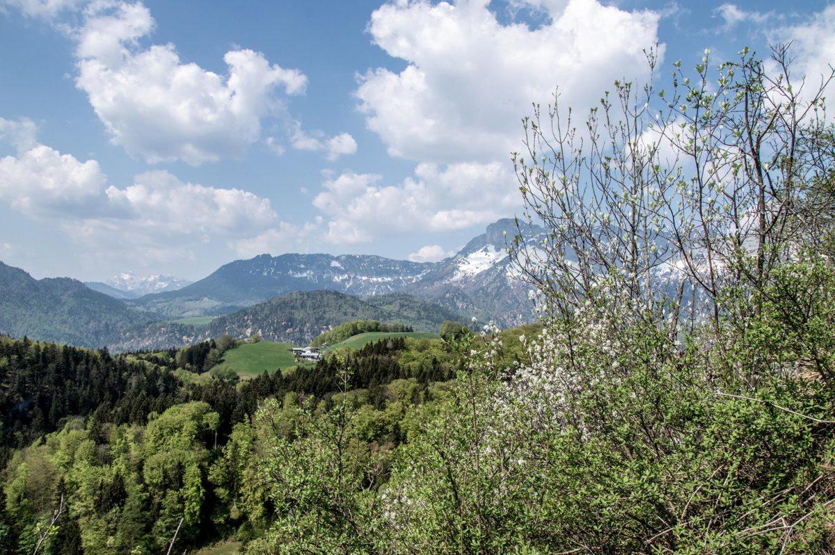 Blick in Richtung RAuher Kopf, Untersberg