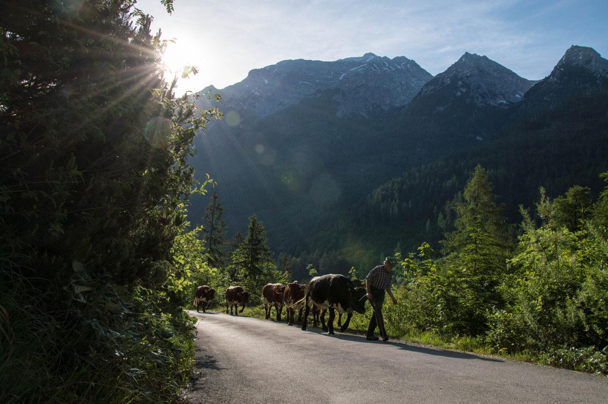 Erstes Steilstück auf dem Weg durchs Klausbachtal