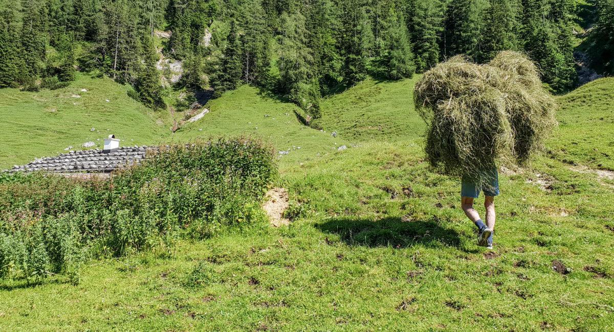 Eine keline Böschung trennt das Feld vom Kaser