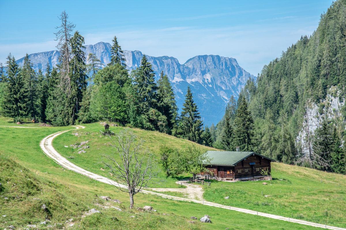 Die Büchsenalm, im Hinetrgrund der Untersberg