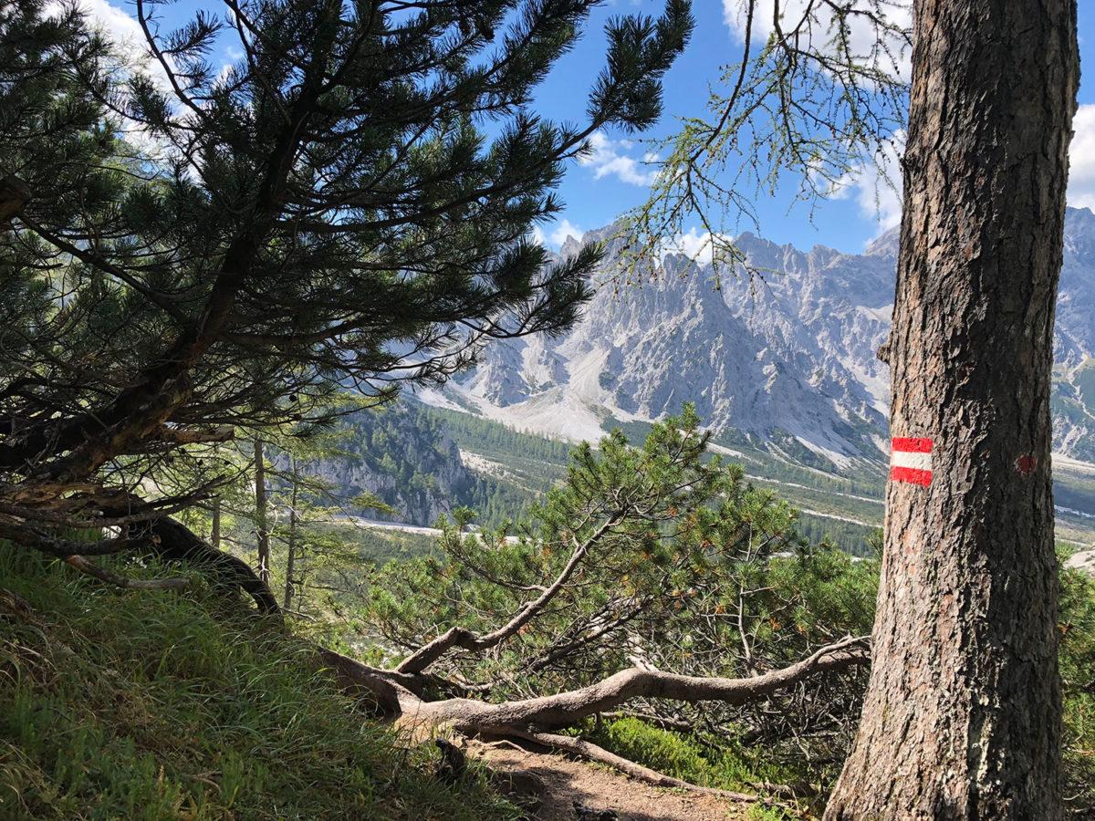 Die letzten Meter auf dem Weg zur Grieshütte