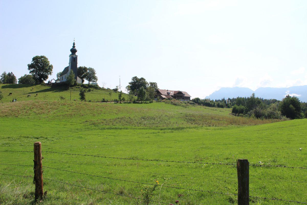 Johannishögl Piding