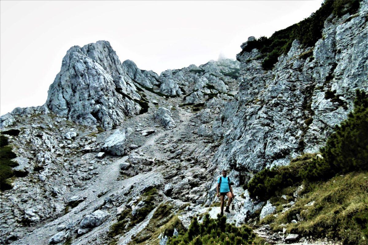 Alpines Feeling vor den Toren Bad Reichenhalls