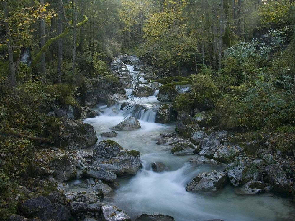 Geotop Zauberwald – gewaltiger Bergsturz, den man bei einer familienfreundlichen Wanderung durchstreifen kann.