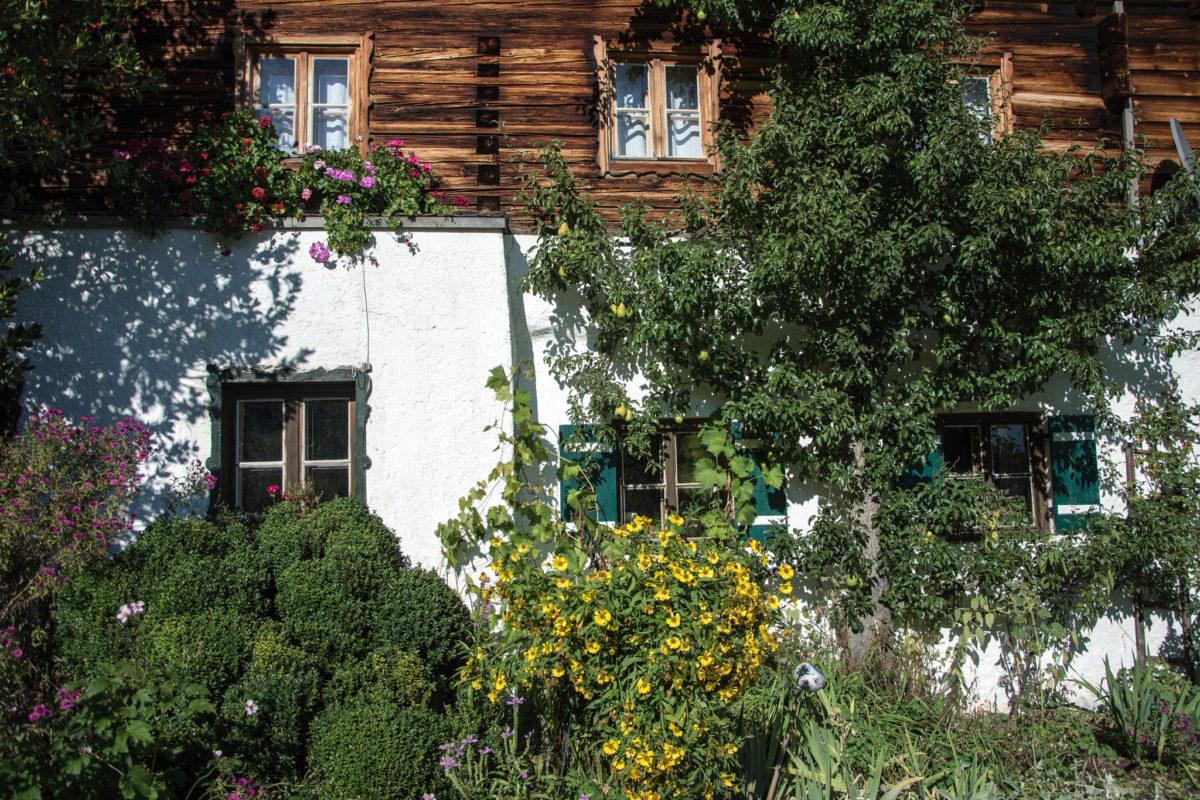 üppig bewachsene Wand des Untersberglehens