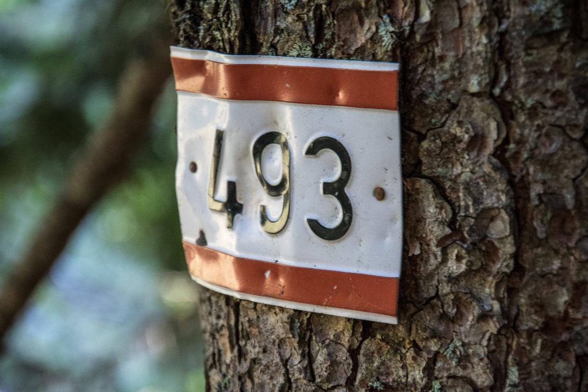 Alpenvereins Weg 493