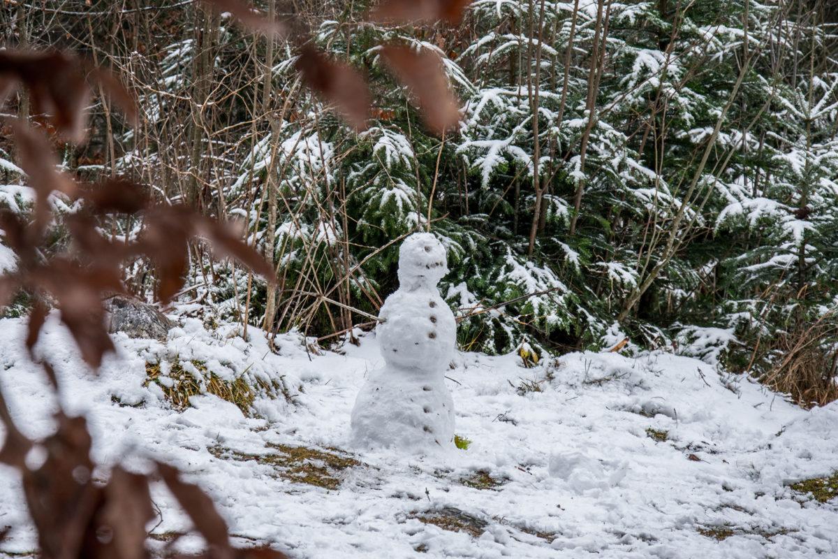Ein Schneemann am Ufer des Hintersees