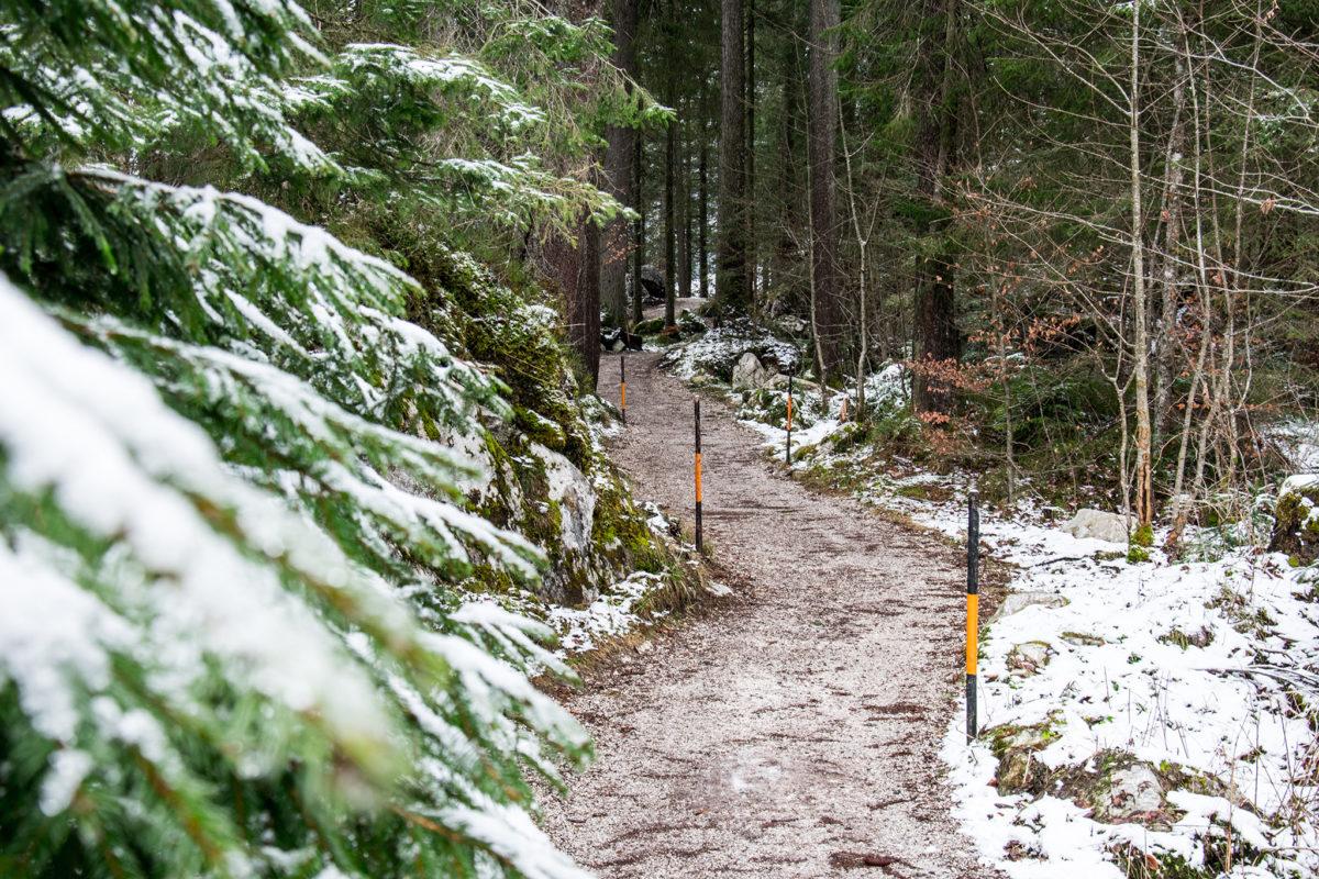 Der Prinzregent Luitpold Weg rund um den Hintersee