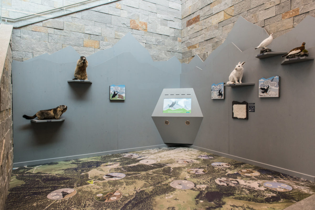 Die Ausstellung des Nationalparks Berchtesgaden in der Bergstation der Jennerbahn