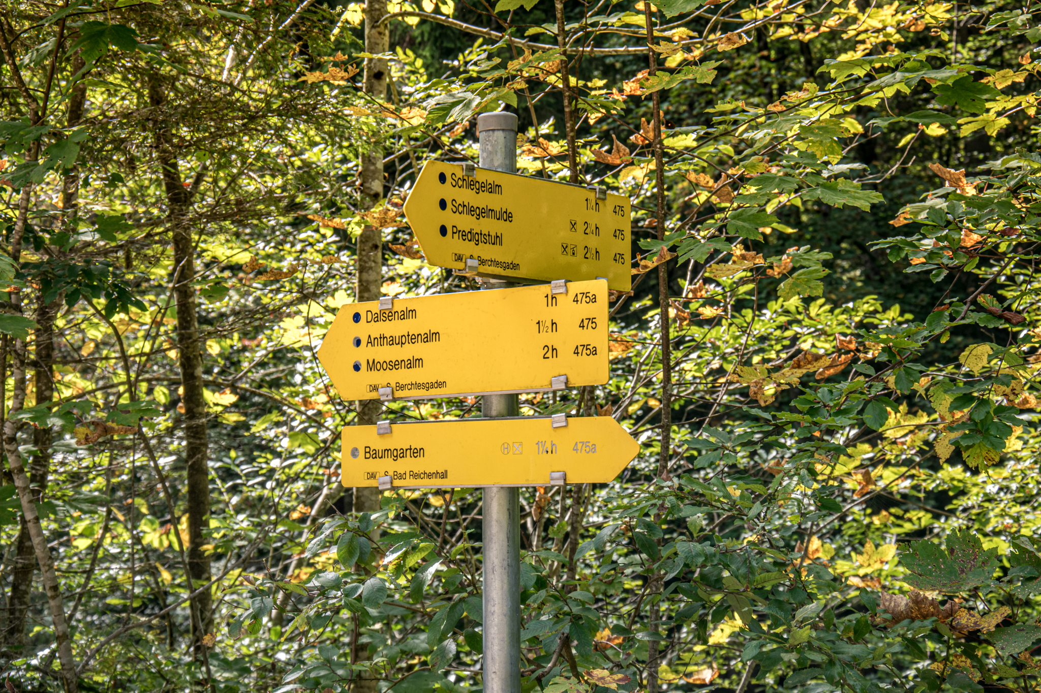Wegweiser Röthelbach Lattengebirgs-Almen