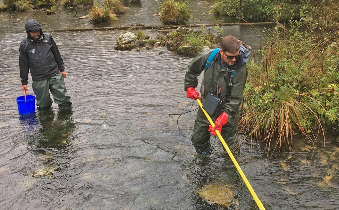 Befischung des Saletbachs zwischen Obersee und Königssee